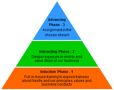 MT Program phases